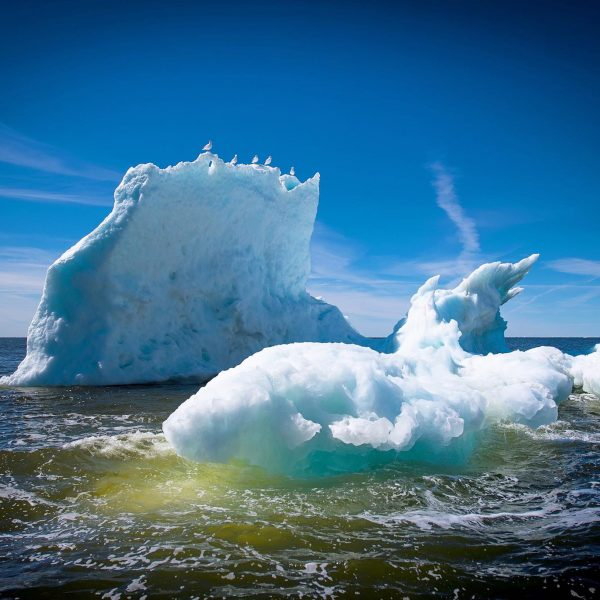 sea-north-tours-floe-ice-tours