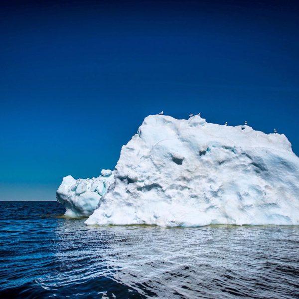 sea-north-tours-floe-ice-tours-ice-berg-churchill