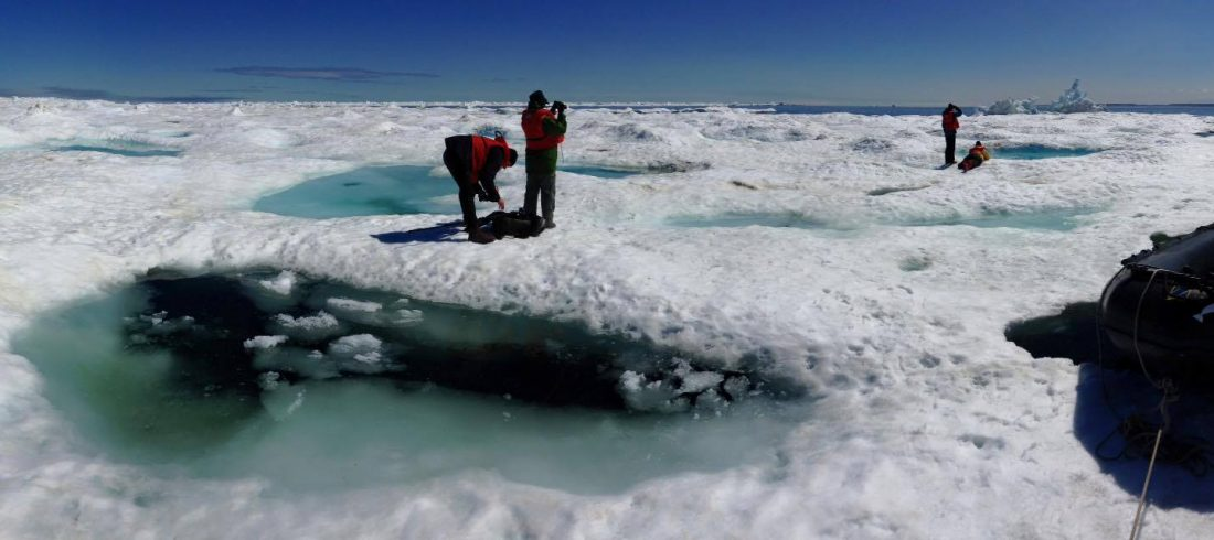 sea-north-tours-floe-ice-tours-panoramic-ice-churchill-alex