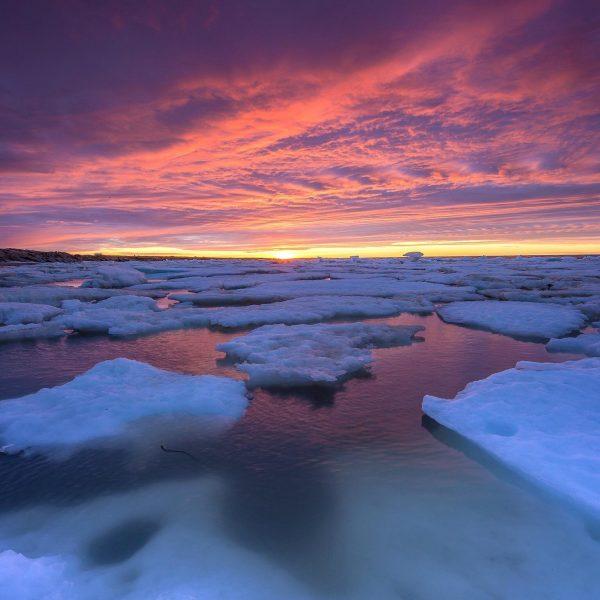 sea-north-tours-floe-ice-tours-sunset-churchill