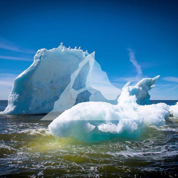 floe-ice-tour
