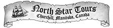 north-star-tours-logo